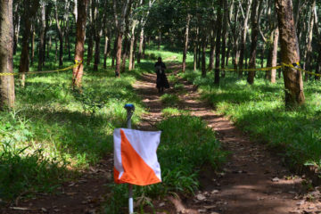 finish orienteering